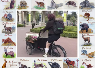 Un vélo autour de la cité